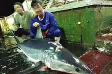45 ABK Indonesia di Kapal Ikan Asing Mengaku Belum Terima Gaji, Totalnya Rp 2,9 Miliar