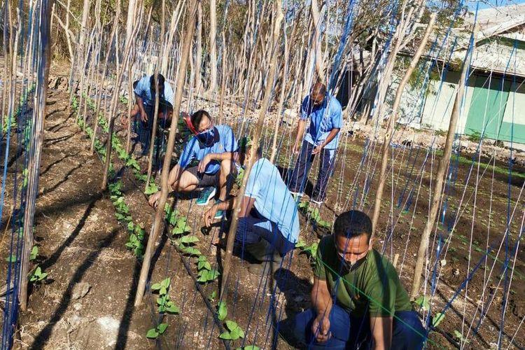 PHOTO:Anggota TNI dari Pangkalan Udara (Lanud) TNI AU El Tari Kupang, Nusa Tenggara Timur (NTT), untuk membuka lahan kebun sayur