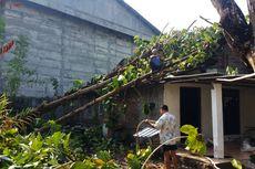 Diterjang Angin Kencang, Rumah Supardi Tertimpa 3 Pohon