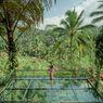 Alas Harum Bali, Wisata Hits Ayunan Ekstrem di Tengah Sawah