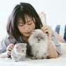 Studi Ungkap Perilaku Kucing Dipengaruhi Kepribadian Pemiliknya