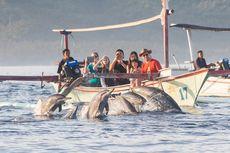 Itinerary 3 Hari 2 Malam di Buleleng Bali, Bisa ke TN Bali Barat