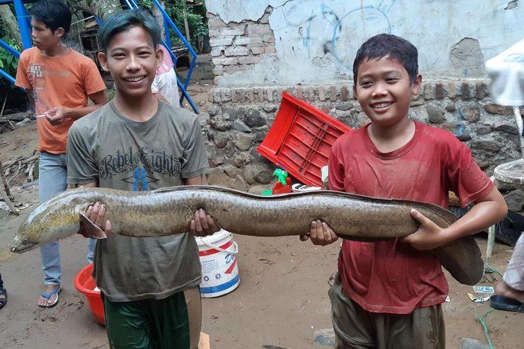 Warga Kampung Salahaur, Rangkasbitung turun ke sungai menangkap ribuan ikan mabuk di Sungai Ciujung, Kabupaten Lebak, Banten, Rabu (1/1/2020).
