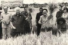 Revolusi Hijau di Indonesia