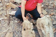 Tiga Arca Kuno Setinggi 60 Sentimeter Ditemukan Warga di Hutan Grobogan, Ini Kondisinya