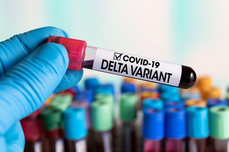 Ilustrasi varian virus corona Delta. Varian ini pertama kali diidentifikasi di India, sebelumnya dinamai B.1.617.2