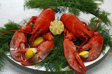 [POPULER Food] 7 Soto Rekomendasi di Semarang   Perjalanan Lobster Jadi Makanan Mewah