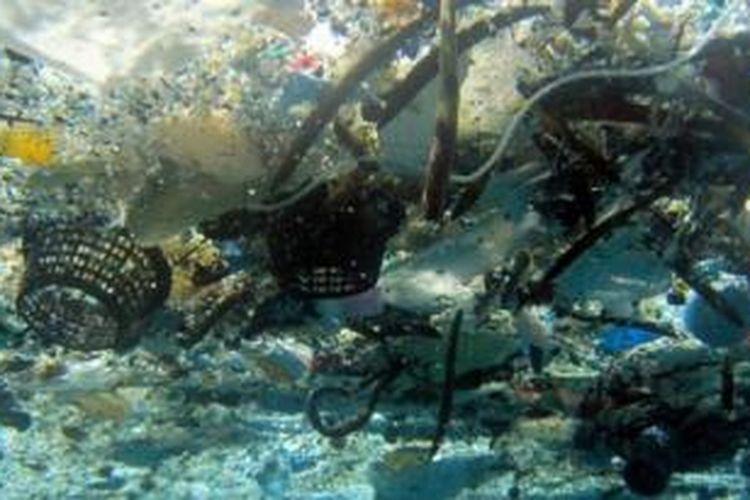 Sampah plastik di Pantai Hanauma, Hawaii.