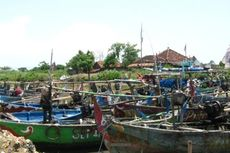 Lagi, Kapal Berpukat Harimau Ditangkap di Perairan Cilincing