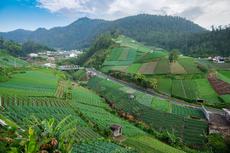 Tawangmangu Jadi Destinasi Wisata Kesehatan di Indonesia