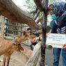 Sumbang Pakan untuk Satwa di Mazoola, WSL: Hewan Juga Butuh Makan
