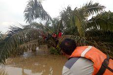 Banjir di Dharmasraya, 1 Bocah Tewas dan Warga Panjat Pohon Selamatkan Diri