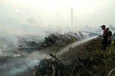 Kebakaran Hutan dan Lahan Kian Meluas, Kabut Asap Merata di Riau
