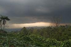 Hujan Angin Landa Sukabumi, Puluhan Rumah dan Pohon Bertumbangan