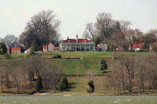 Pohon Berusia 227 Tahun yang Ditanam George Washington Tumbang
