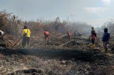 Kebakaran Lahan di Bengkalis Sulit Dipadamkan, Petugas Butuh Bantuan