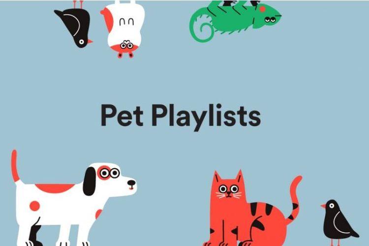 Spotify Buat Playlist Khusus untuk Hewan Peliharaan