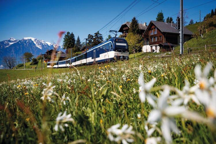 Menikmati panorama Swiss yang menakjubkan dari Kereta Golden Pass