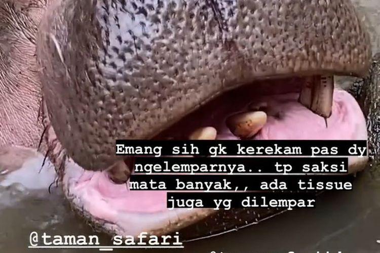 Sejumlah foto yang menampilkan seekor kuda nil diberi makan sampah di Taman Safari Indonesia (TSI), Kabupaten Bogor, Jawa Barat, viral di media sosial Senin (8/3/2021).