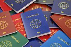Mengapa Hanya Ada 4 Warna Paspor di Dunia?