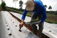 Melihat Potensi Sumber Daya Indonesia