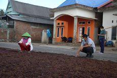 Menko PMK Dorong Kabupaten Bulukumba Berdayakan Petani Rumput Laut