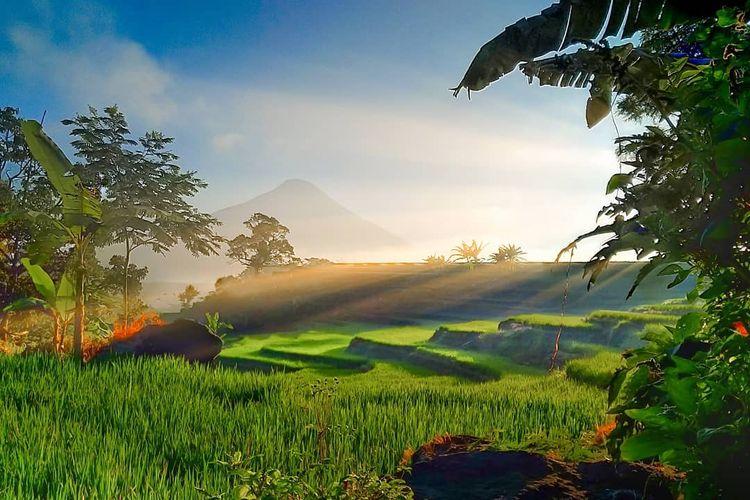 Selotapak, Trawas, Mojokerto, Jawa Timur DOK. Instagram.com/khajiethayeib