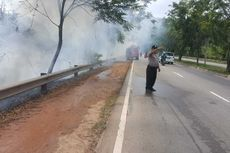 Hutan Mata Kucing Terbakar Diduga akibat Puntung Rokok