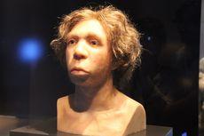 Peneliti Pelajari Kotoran Manusia Purba Neanderthal, Untuk Apa?