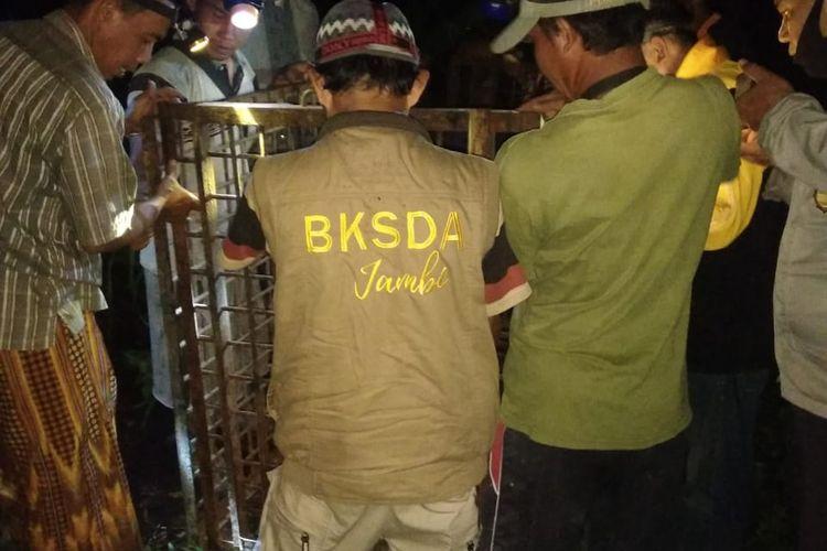 Tim BKSDA Jambi bersama warga Kelurahan Teluk Nilau saat memasang perangkap satwa liar jenis macan dahan karena sudah masuk ke permukiman