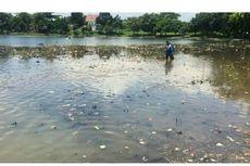 Mengunjungi Situ Cilodong yang Akan Dijadikan Destinasi Wisata Baru di Depok