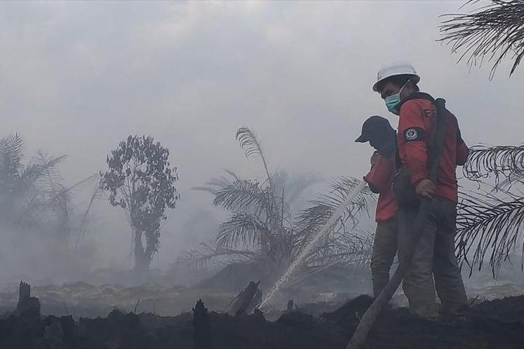 Kebakaran hutan dan lahan di wilayah Siak, Riau, sepekan lalu, yang mengeluarkan kabut asap.