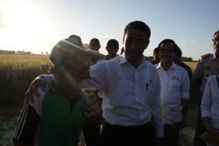Menteri Pertanian (Mentan) Andi Amran Sulaiman bertemu petani di Kampung Waminggap Miraf SP 5, Distrik Tanah Miring, Kabupaten Merauke, Papua, Minggu (10/5/2015).