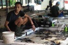 Gagal Panen, Pasokan Ikan Air Tawar di Pasar Tradisional Cianjur Menurun