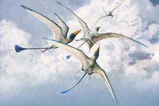 Kadal Raksasa Belajar Terbang Selama 150 Juta Tahun, Kok Bisa?