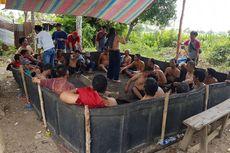 Digerebek Polisi, Pejudi Dimasukkan ke Arena Sabung Ayam