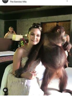 Luna Maya berfoto dengan orangutan
