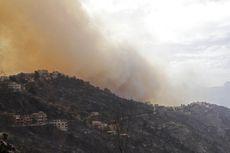 Kebakaran Hutan Aljazair, 42 Orang Tewas Termasuk Tentara