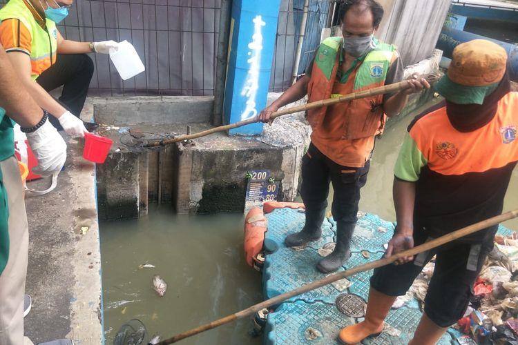 Suku Dinas Lingkungan Hidup (LH) Jakarta Utara melakukan pengambilan sampel air Kali Ancol pada Selasa (30/3/2021).
