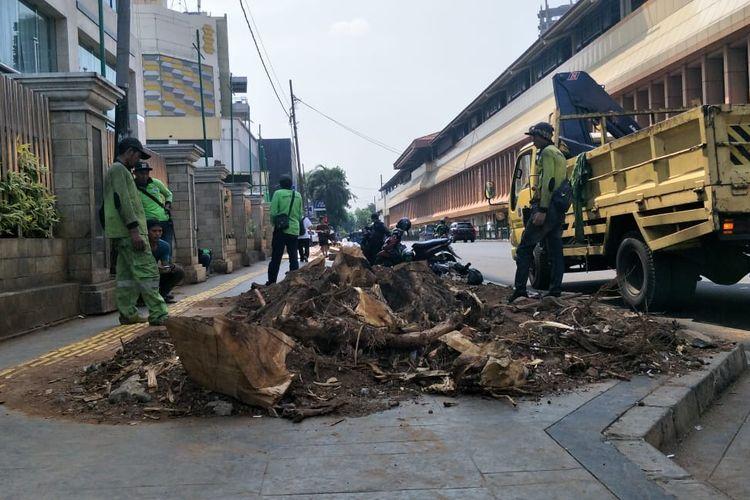 Pepohonan sepanjang Trotoar Cikini, Jakarta Pusat, Senin(4/11/2019).