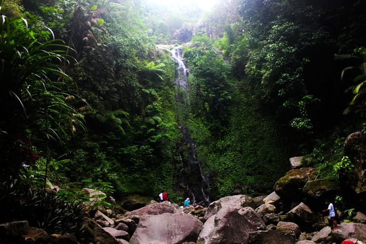 Keindahan air terjun Suwono yang berasal dari mata air yang tak pernah kering  di Kabupaten Ngawi mampu memberikan suasana segar ditengah hiruk pikuknya isu virus corona.