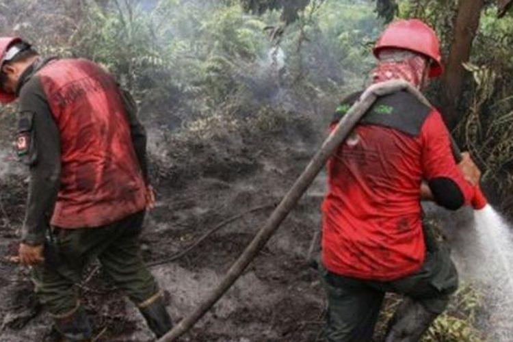 Petugas Manggala Agni Daops Pekanbaru berusaha memadamkan bara api kebakaran lahan gambut di Pekanbaru, Riau, Sabtu (14/9/2019). Kebakaran hutan dan lahan di Provinsi Riau yang masih terjadi mengakibatkan sejumlah wilayah di Provinsi itu terpapar kabut asap yang menyebabkan kualitas udara memburuk.