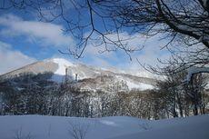 Rekomendasi Destinasi Wisata saat Musim Gugur dan Dingin di Jepang