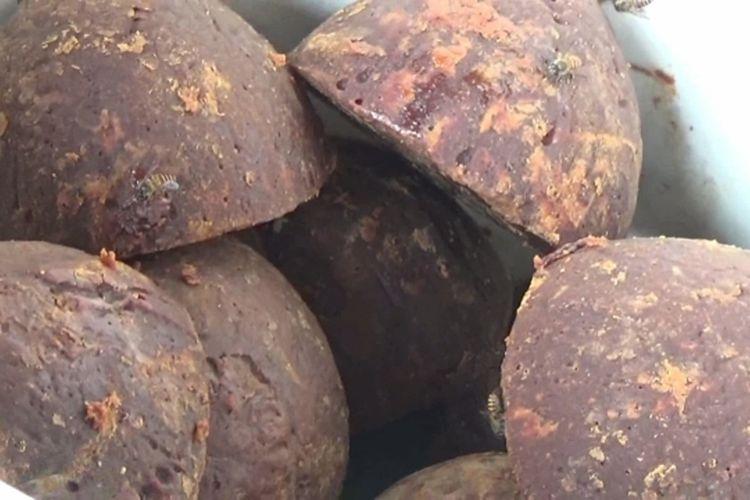 Proteksi Kekebalan Tubuhnya dari Corona, Warga Polman Rame-Rame Bikin Ramuan Jahe dan Kencur