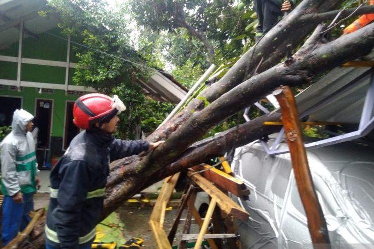 Sebuah pohon tumbang menimpa rumah di Kecamatan Cicalengka, Kabupaten Bandung, Minggu (1/11/2020).