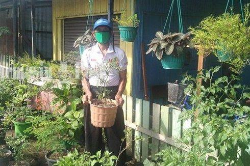 Pensiunan TNI Dapat Gelar Petani Berprestasi dari Menteri, Ini Ceritanya...