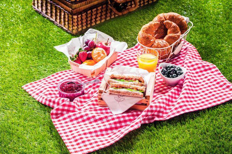 Ilustrasi piknik.