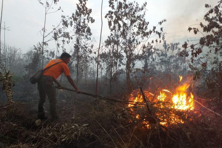 Seorang petugas Manggala Agni mematikan api kebakaran hutan dan lahan (karhutla) di Kelurahan Terkul, Kecamatan Rupat, Kabupaten Bengkalis, Riau, Rabu (20/2/2019).