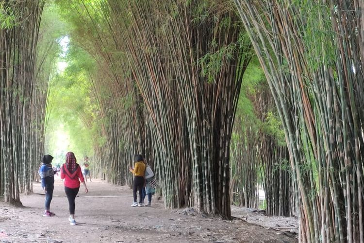 Taman Harmoni atau Taman Hutan Kota Keputih Surabaya