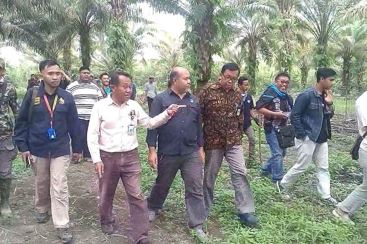 Tim BKSDA Sumsek dipimpin Kasi Konservasi Aziz Abdul Latief memeriksa lokasi arbotreum Unsri lokasi dimana suara auman harimau terdengar oleh seorang mahassiw yang sedang melakukan peneltian.